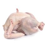 Turkey Whole / Each (~13 Lbs)